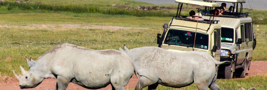 2-days-tanzania-lodge-safari-ngorongoro-crater-tarangire-package-1