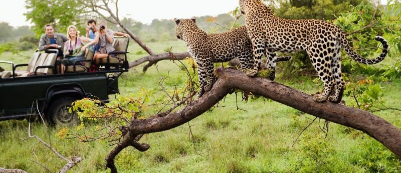 east-africa-tour-1-800x450-1